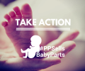 pp-take-action